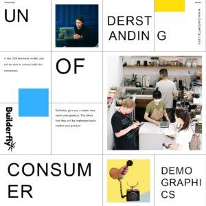 Understanding of consumer demographics