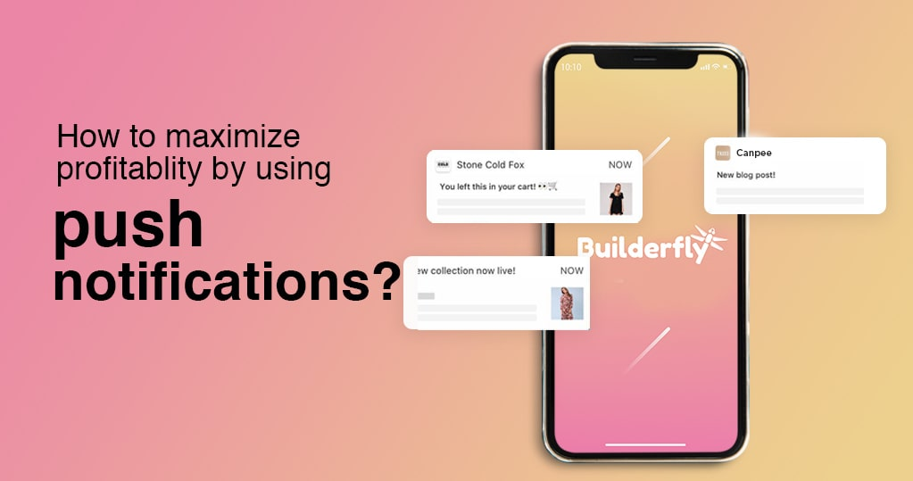 How to Maximize Profitability by Using Push Notifications?